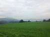 3Hochzeit mit The Hobos Neuheim 19.08.16-3
